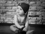 bobas w czapce na tle cegieł